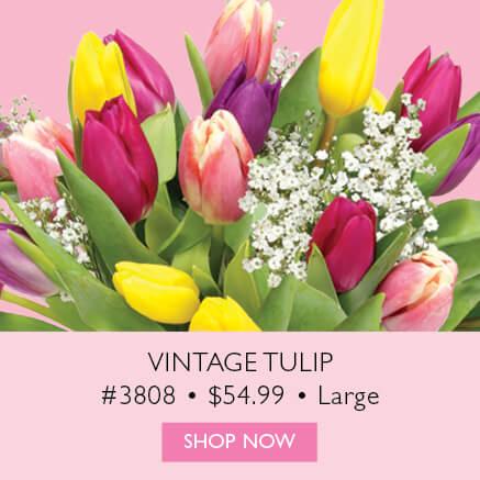 Vintage Tulip Large