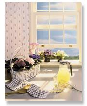 Violets sitting on a windowsill.