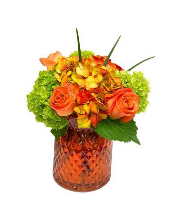 Happy Hydrangea, Orange with Roses