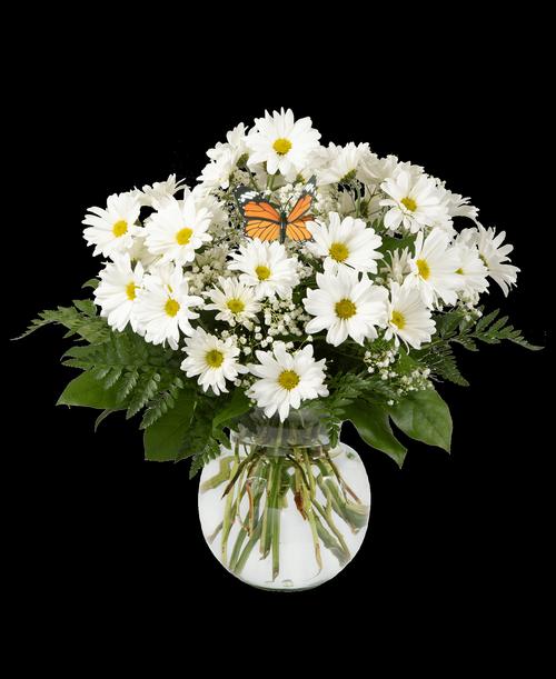 Daisy Vase, Large #422