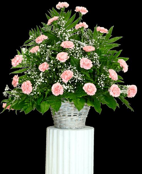 Traditional Carnation Basket #5504