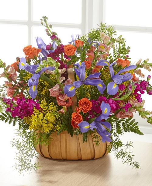 FTD Garden of Life Basket - Premium